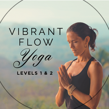 Vibrant Flow Yoga DVD
